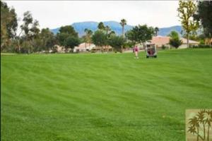 Avondale-Golf-Club-Golf-Course