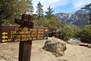 Hiking Trails in Idyllwild